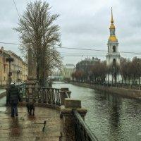 В Питере дождливая погода :: Михаил Александров
