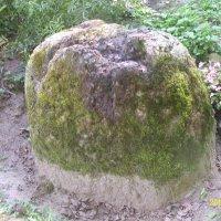 Камень-следовик :: Виктор Мухин