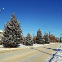 Вот и снег... :: Сергей Петров
