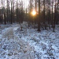 Привыкаем к новым приметам Нового года :: Андрей Лукьянов