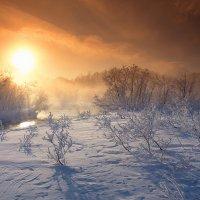 Зимнее утро :: Николай Макаренков