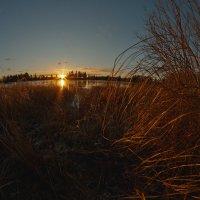 Зимний пейзаж :) :: Dmitri_Krzhechkovski Кржечковски