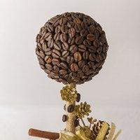 кофейное дерево :: Евгений Вяткин