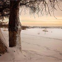 Зимний пляж. :: Владимир Сидоркин