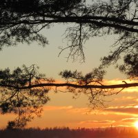 Закат уходящего дня... :: Mariya laimite