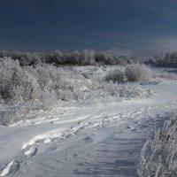 Таинственными тропами к нам Новый Год идёт... :: Александр Попов