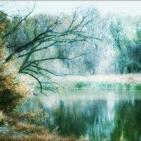 Русалочье зеркало.. :: Ирина Сивовол