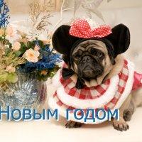 С Новым Годом! :: Игорь Юрьев
