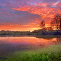 Теплота декабрьского рассвета...3. :: Андрей Войцехов