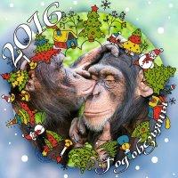 год обезьяны :: Galina Belugina