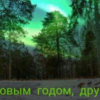 С наступившим 2016 годом! :: Милешкин Владимир Алексеевич