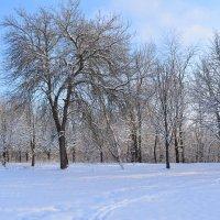 Зимние,сельские зарисовки-3 :: Любовь