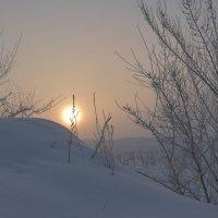 Туманный вечер :: юрий Амосов