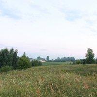 Свежий воздух :: Евгения Досина