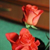 Розы :: Лидия (naum.lidiya)