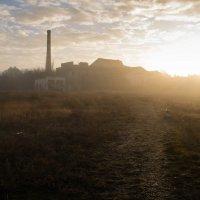утро туманное... :: TaniAnt