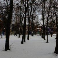 Зима ... :: Игорь Малахов