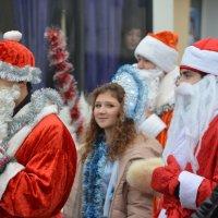 Дедов Морозов много не бывает! :: Ольга Голубева