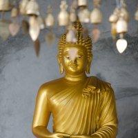 будда :: максим дьяков