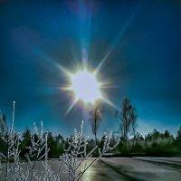 Морозное утро :: Владимир Орлов