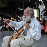 Уличный музыкант. :: Павел Лушниченко