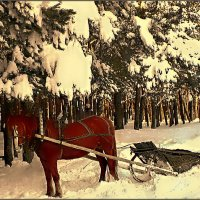 Новогоднее такси :: Кай-8 (Ярослав) Забелин