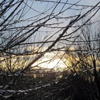 Ледяные подвески :: Вера Щукина