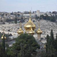 Иерусалим 15 декабря 2015г :: Надежда