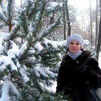 Зимой... :: Елена Семигина