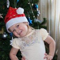 Новогодняя радость! :: Роман Царев