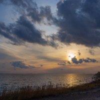 Вечер на заливе :: Виталий