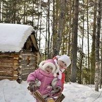 Игры в лесу :: Владимир Кочнев