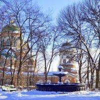 Узор зимы, неповторимый. :: Олег Барзолевский