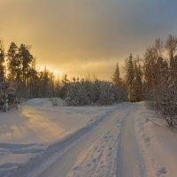 Короткий зимний день :: vladimir Bormotov