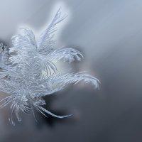 рисунок на стекле :: Евгений Вяткин