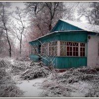 Зимний денек :: оксана косатенко