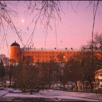 Uppsala slottet :: liudmila drake