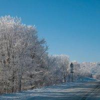 моя зима :: Олеся Енина