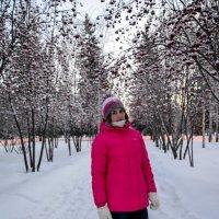 На тропе в зиму. :: Света Кондрашова
