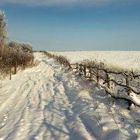 Дорогами зимы :: Александр Плеханов
