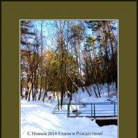 Поздравительная открытка :: Валентина (Panitina) Фролова