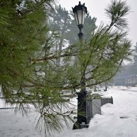 Зимняя зарисовочка :: Татьяна Миронова