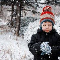 Первый снег :: Ольга сташевски