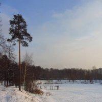 В Москве - мороз (минус 18) :: Андрей Лукьянов