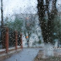 Дождь :: Валерий Лазарев