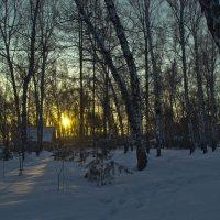 Утро в городском парке. :: cfysx