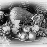 Сеть и виноградная лоза :: Nina Yudicheva