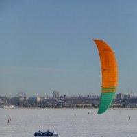 Фестиваль «Оранжевый ветер-2016», заключительный день. :: Наиля