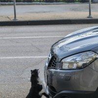 Как завести машину? :: Игорь Кузьмин