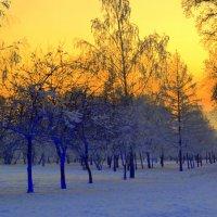 Зимний закат :: Дмитрий Самарин